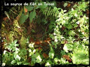 source Ker an traon